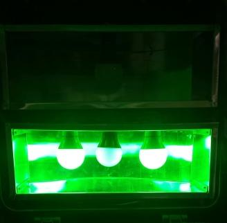 lps20_open_green